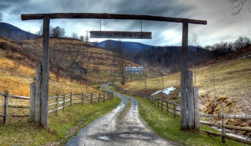 The Asylum, the Poorhouse, & Other Tales of West Virginia