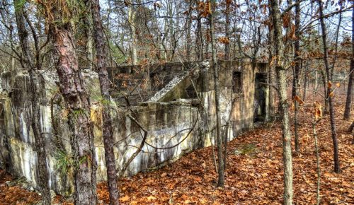 Pine Barrens Part II:  The Jersey Devil, World Wars, and Racetracks Old and New