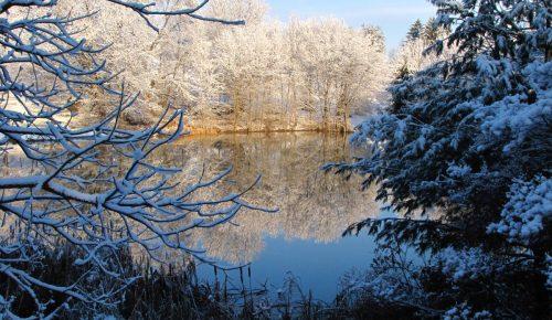 A Mason-Dixon Winter Wonderland, by BMW